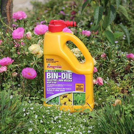 Bindie Weed Killer | Atlas Turf Sydney
