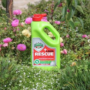 Lawn Rescue | Atlas Turf