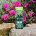 Sledgehammer Herbicide | Atlas Turf