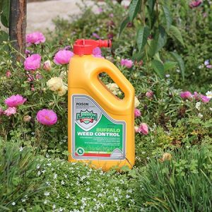 Buffalo Weed Killer | Atlas Turf