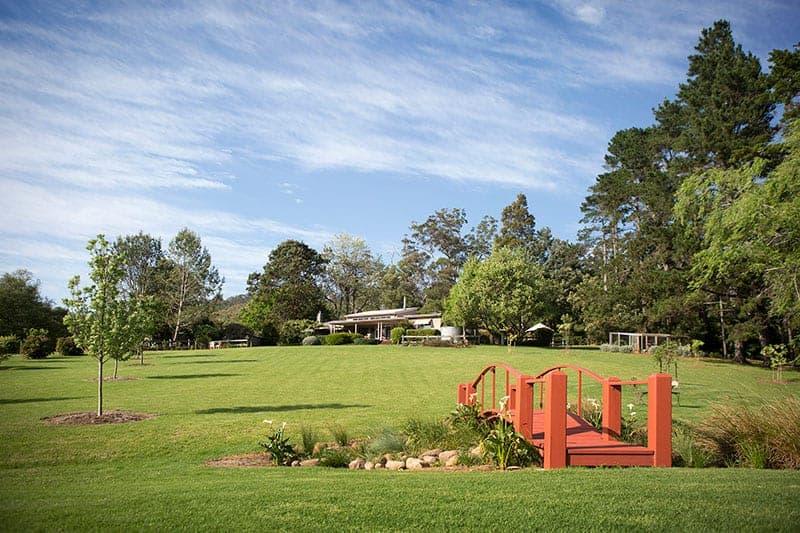 Sydney Lawn Turf | Atlas Turf