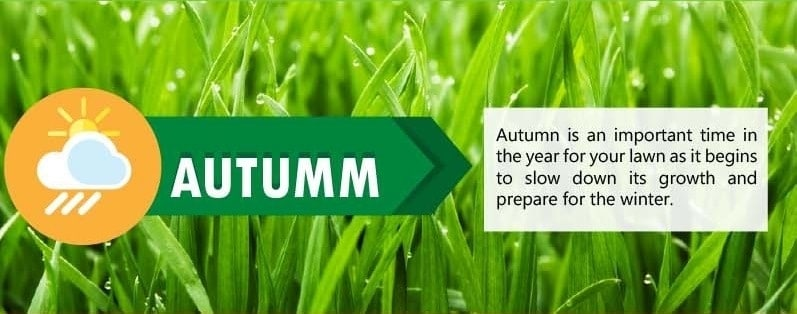 Lawn Care Tips for Autumn Season