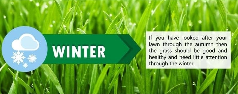 Lawn Care Tips for Winter Season