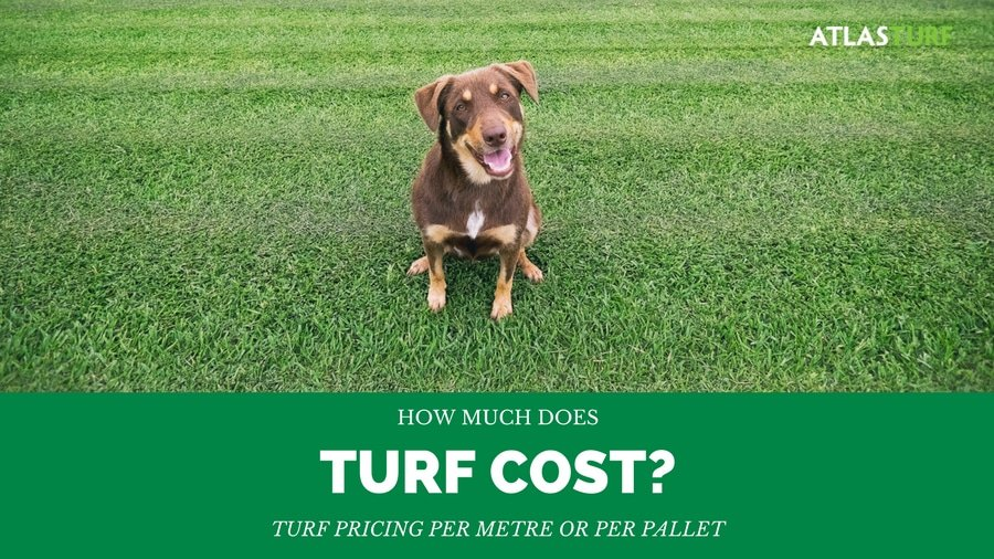 Turf Pricing Guide - Per square metre or by pallet