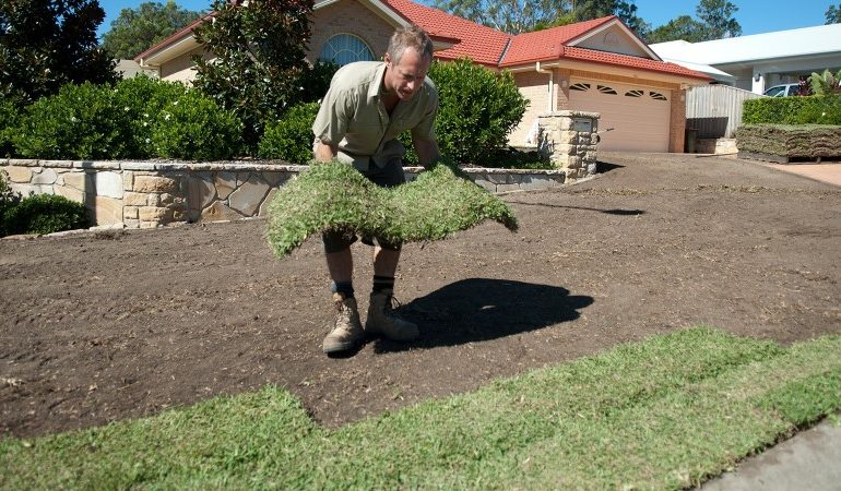 Step by step guide on how to laying turf rolls