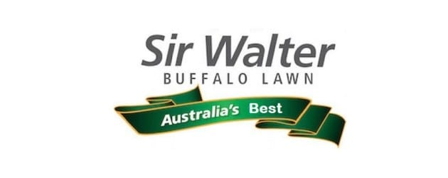 Sir Walter Buffalo Lawn Turf Supplies by Atlas Turf Supplies